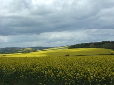 Vakantie Engeland Mei 2015 061